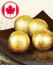 캐나다 공진단